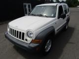 Jeep Liberty CRD 2005