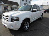 Ford Expedition Max 2010