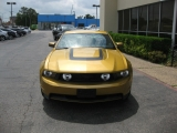 Ford Mustang GT Premium 2010
