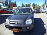 Hyundai Santa Fe GLS Auto 4wd 2006