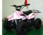 TAO TAO 110cc ATV Quads 2014
