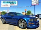 Ford Mustang ROUSH 2007