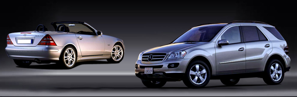 The Car Store. (843) 650-2917