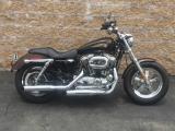 Harley-Davidson 23 Mile XL1200 Anniv 2013