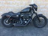 Harley-Davidson XL883N Sportster 2011
