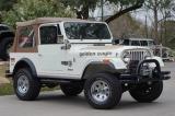 Jeep CJ-7 Golden Eagle 1979