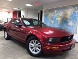 Ford Mustang Deluxe 2005