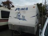 Palamino Puma 2008