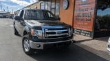 FORD F-150 4WD 2014