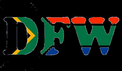 DFW Motors
