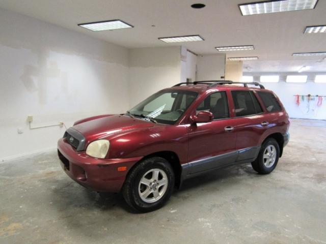 Perfect 2002 Hyundai Santa Fe