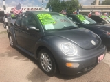 Volkswagen New Beetle Coupe 2005