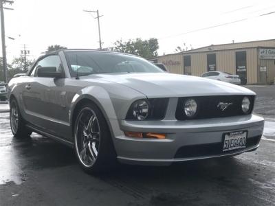 2006 Mustang Convertible GT (Summer Time Fun)