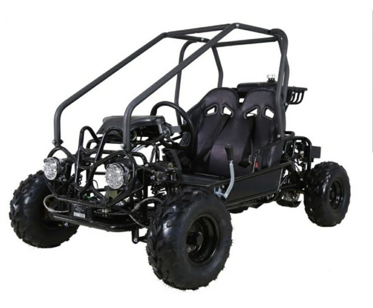 TAO TAO GO CART 2019 price $1,398
