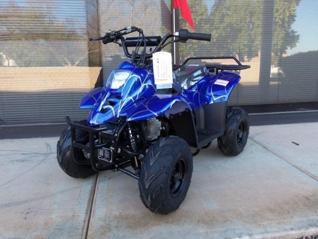 2019 - Moto X ATV 110