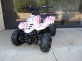 - Coolster ATV 110 2019