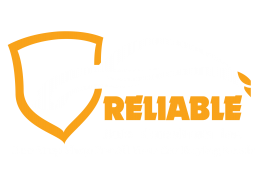 Reliable Auto Consultants Inc.