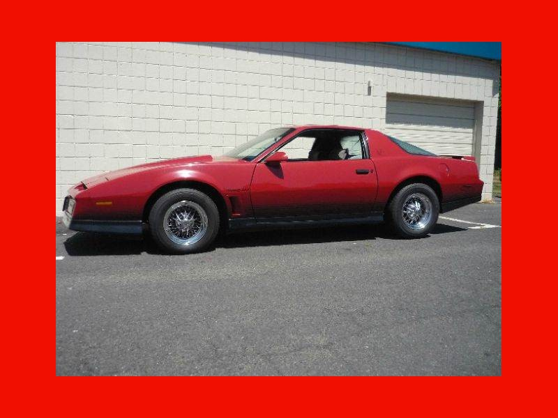 20+ 1984 Pontiac Firebird Trans Am