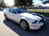 Ford Mustang Shelby GT500 6Spd Manual 2007