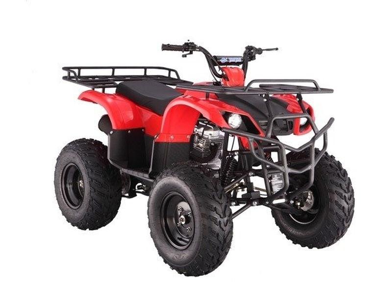 TAO MOTOR 250 RHINO 2020 price $1,699