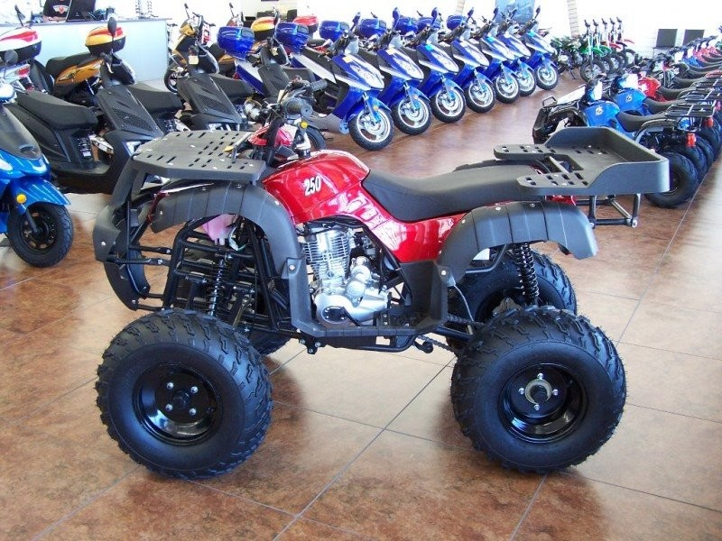 2019 Brand New 250 Atvs Zero Down Oac Arizona Motor