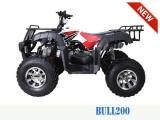 TAO MOTOR BULL 200 2020