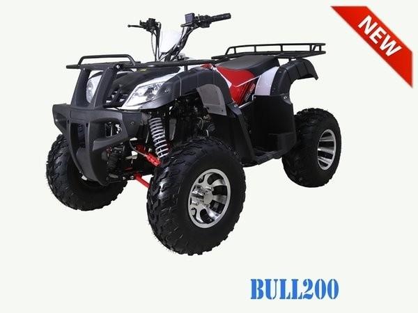 2019 TAO MOTOR BULL 200