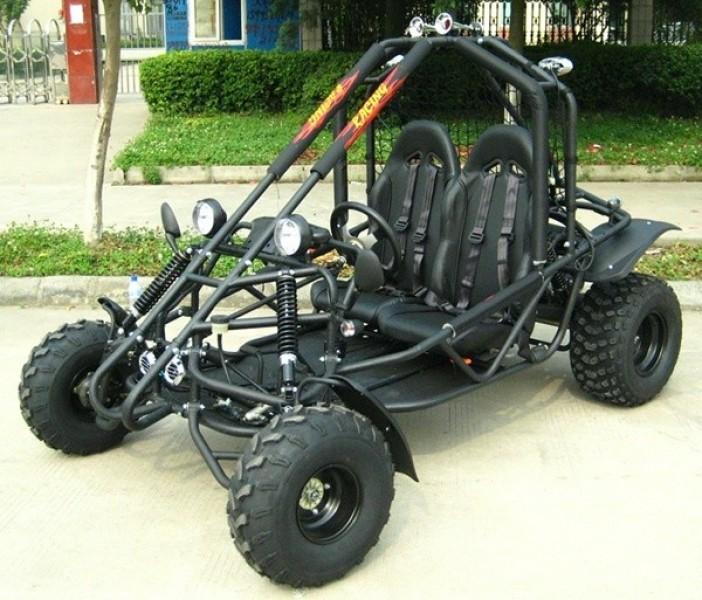 Brand New Kandi 200cc Full Size Go Kart Mini Rail