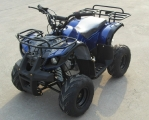 TAO TAO 125cc ATV 2017