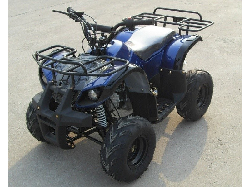 TAO TAO USA ATA125 2020 price $899