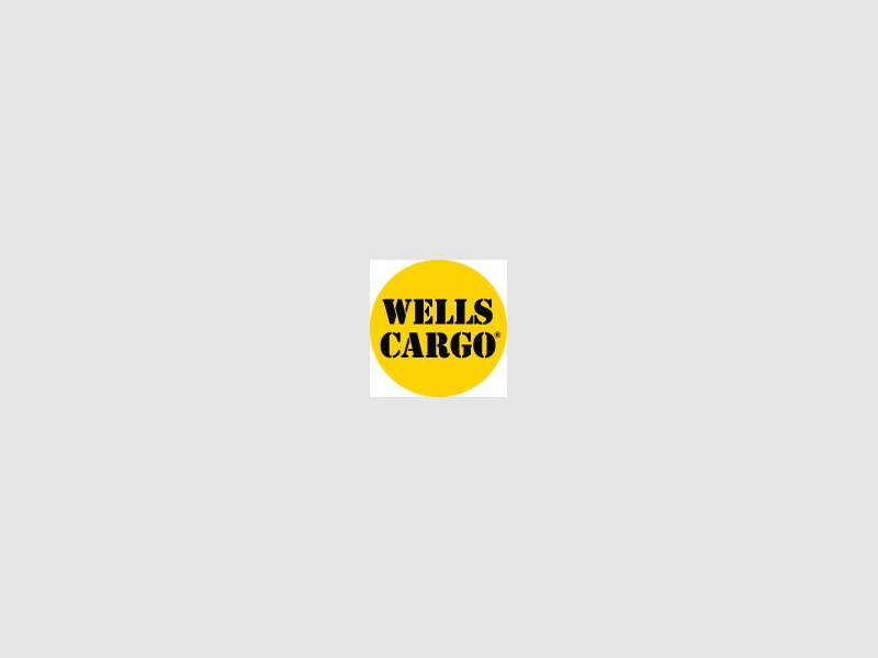 WELLS CARGO FT 6x10 2020 price $3,195