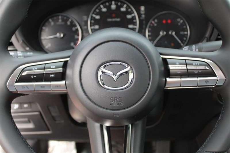Mazda Mazda3 2019 price $24,623