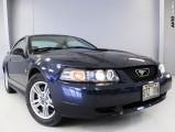 Ford Mustang Manual 2002