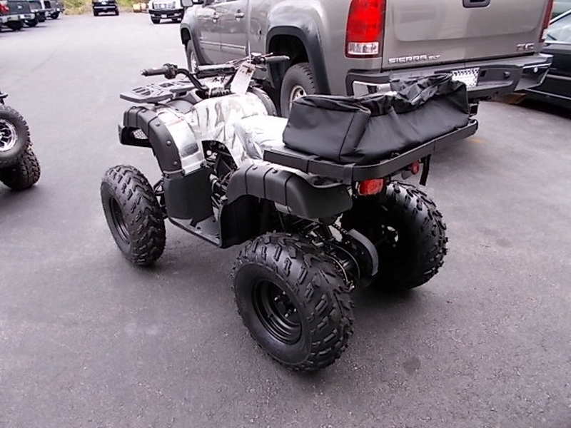 Other Makes COOLSTER LARGE 150CC 2019 price $1,899